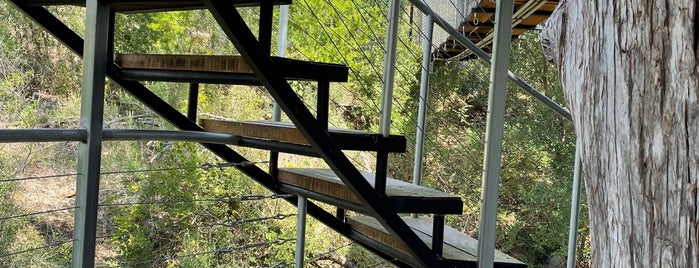 Cypress Valley Canopy Tours is one of SXSW 2014.
