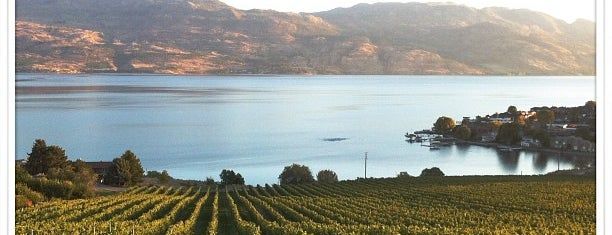 Quail's Gate Winery is one of 10 Best Okanagan Wineries.
