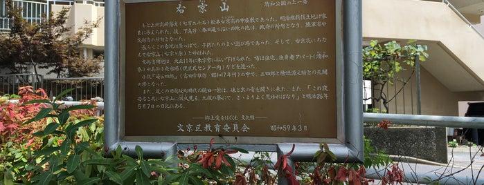 右京山 is one of place to chillax.