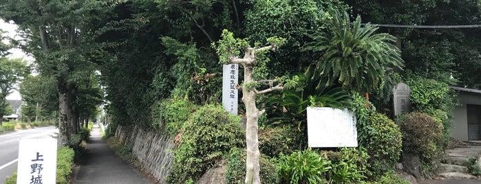上野城址 is one of 三河武士を訪ねる岡崎の旅.
