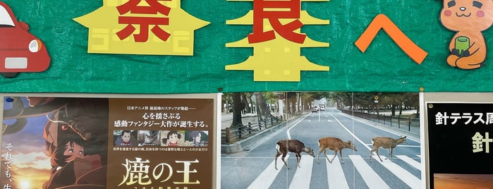 Nara is one of Japan 🇯🇵.