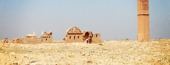 Harran is one of Lieux qui ont plu à Pelin.