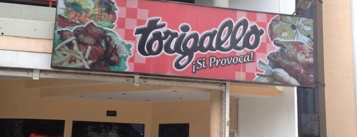 Torigallo is one of Posti che sono piaciuti a Veronica.