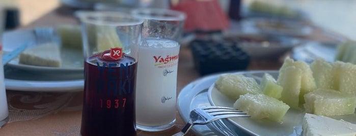 YAĞMUR OCAKBAŞI is one of Gurme İstanbul Anadolu.