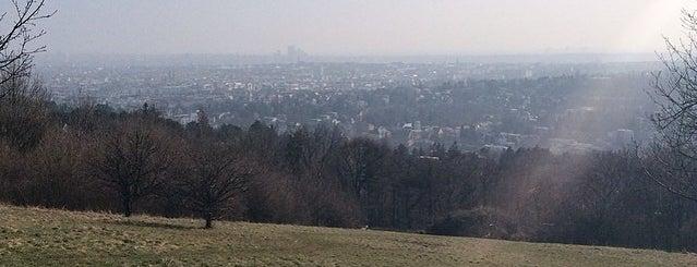 Pötzleinsdorfer Höhe / Wiese is one of L Rest.