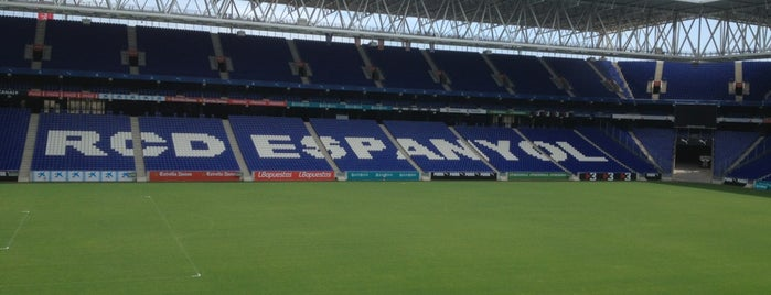 RCDE Stadium is one of 2013-14 La Liga Stadium.