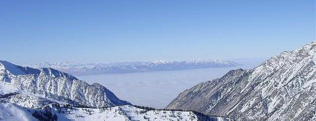 Snowbird Ski & Summer Resort is one of ski bumming.
