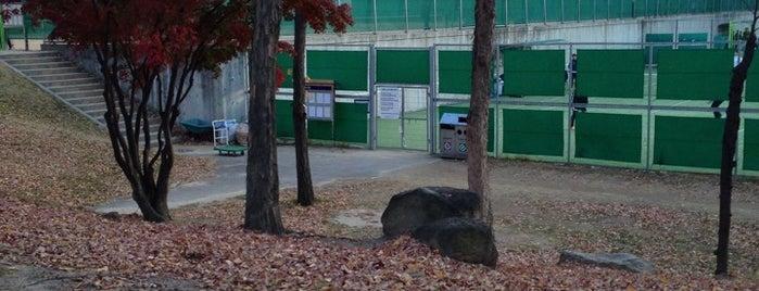서울대학교 테니스 코트 is one of สถานที่ที่ Kyusang ถูกใจ.