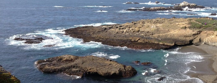 Point Lobos State Reserve is one of Tempat yang Disukai Ross.