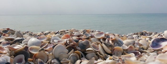 Маяк острова Джарылгач is one of Marina'nın Kaydettiği Mekanlar.