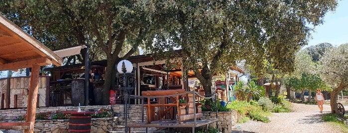 Orlandin,grill-beach bar is one of Croatia top spots.