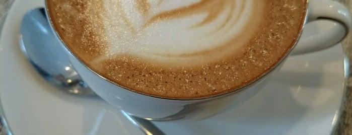 natural Cafeina is one of Tempat yang Disimpan Skotaro.