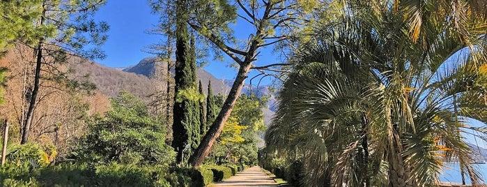 Парк Принца Ольденбургского is one of Kateさんの保存済みスポット.