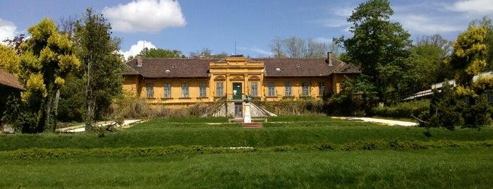 Budai Arborétum is one of hidden budapest.