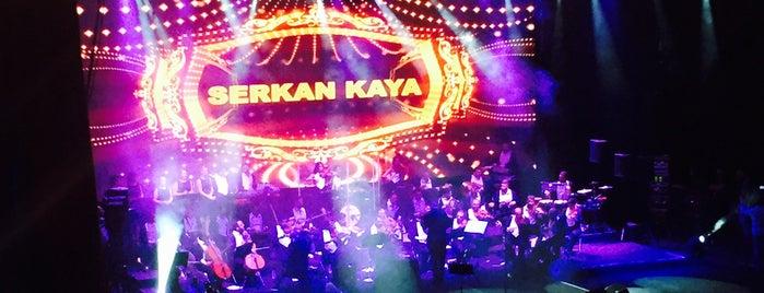Serkan Kaya Harbiye Acık Hava Konseri is one of Ayça'nın Beğendiği Mekanlar.