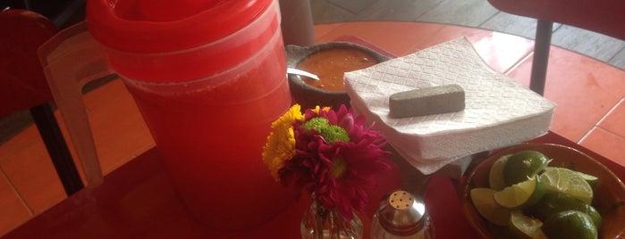 Tortilla y salsa is one of Lugares guardados de Betsy.