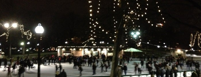 Frog Pond is one of Boston's Best Great Outdoors - 2012.