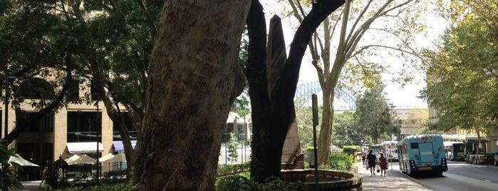 Macquarie Place is one of Lugares favoritos de Darren.
