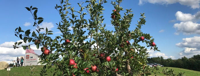 Dowse Orchards Apple Picking is one of Lugares guardados de Sean.