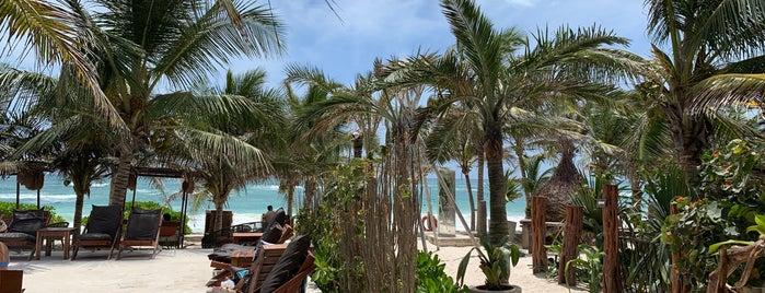 Mia Restaurant & Beach Club is one of Tulum.