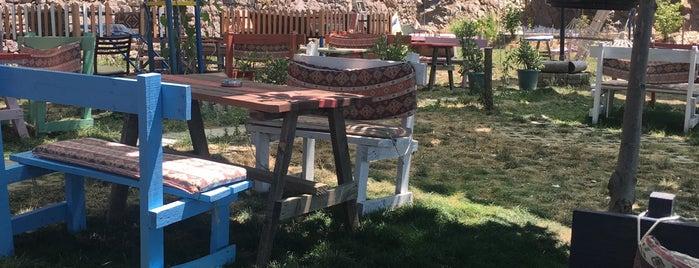 Rüzgar Gülü Aile Piknik Alanı is one of MEYHANELER.