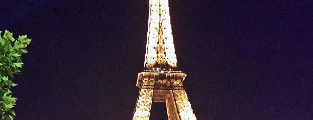 Torre Eiffel is one of Posti che sono piaciuti a Guillermo.