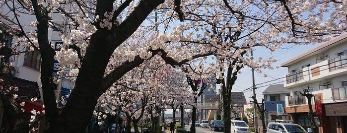 寝屋川球場跡 (京阪グラウンド跡) is one of 大阪なTodo-List.
