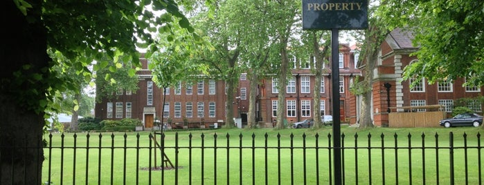 Regent's College is one of The Great Trees of London.
