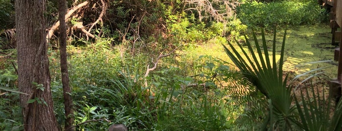 Sea Pines Forest Preserve is one of Hilton Head & Savannah.