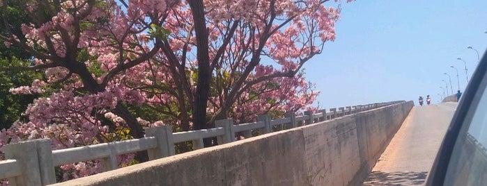 Parnaíba is one of Cidades que conheço.
