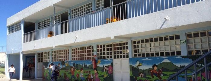 Colegio Puebla de los Ángeles is one of Lugares favoritos de Paoxz.