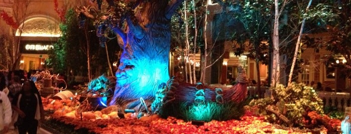 Bellagio Conservatory & Botanical Gardens is one of Top 10 Vegas Family-Friendly Attractions.
