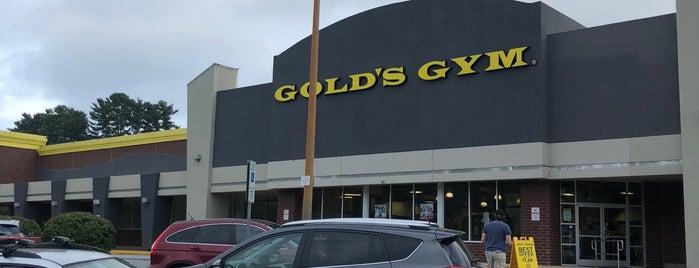 Gold's Gym is one of Locais curtidos por Stephanie.