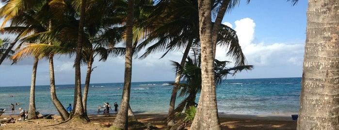 Playa La Pared is one of สถานที่ที่ Sandra ถูกใจ.