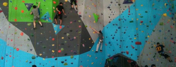 Rock Domain Climbing Gym is one of Christine 님이 좋아한 장소.