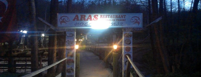Aras Balık Restaurant is one of Trakya ve Marmara.