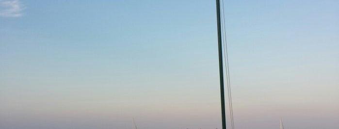 Oyster Pointe Resort Sebastian is one of Posti che sono piaciuti a Jordan.