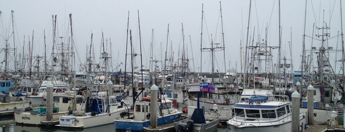 Pillar Point Harbor is one of Locais curtidos por Stephanie.