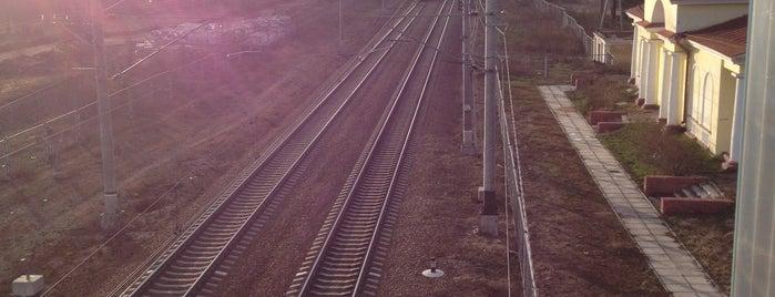 Ж/д платформа «Горьковское» is one of Lugares guardados de Elena.