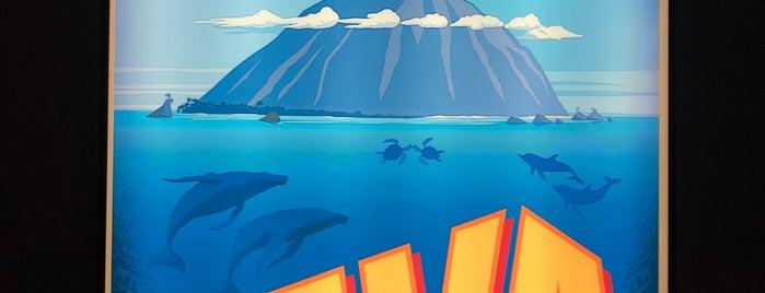 Tomorrowland Theater: Ralph Breaks the Internet is one of สถานที่ที่ Christian ถูกใจ.