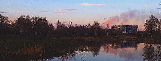 Парк культуры и отдыха им. 30-летия ВЛКСМ is one of Омск.