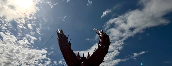 The Big Lobster is one of South Australia (SA).