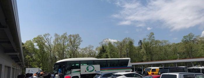 オートパラダイス御殿場 is one of สถานที่ที่ Iori ถูกใจ.