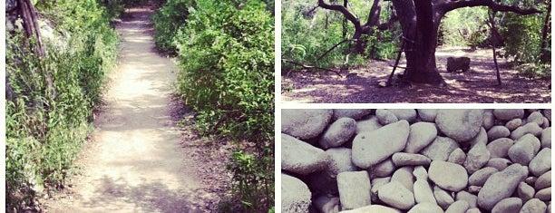 Barton Creek Greenbelt is one of Burket's Texas Visit.