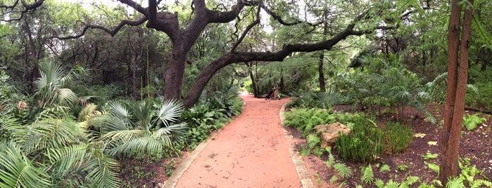 Zilker Botanical Gardens is one of Burket's Texas Visit.