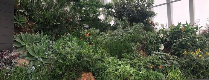 Sky Garden is one of Lieux qui ont plu à Sole.