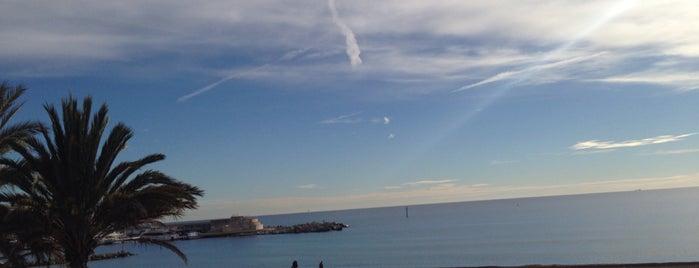 Playa de la Barceloneta is one of Lugares favoritos de Amit.