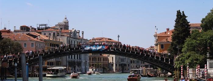 Ponte dell'Accademia is one of Tempat yang Disukai Amit.
