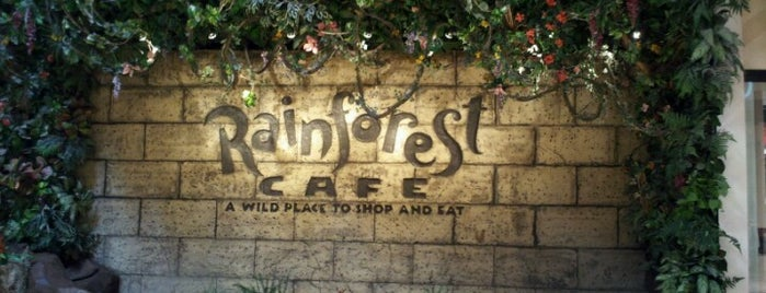 Rainforest Cafe is one of Restaurants.
