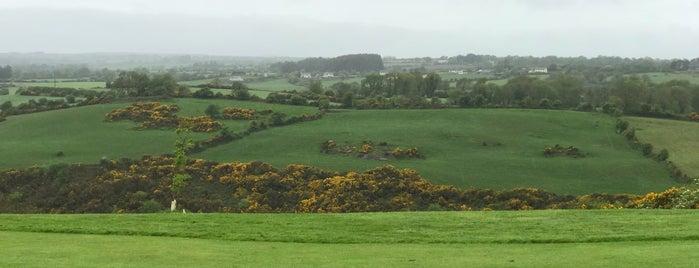Blarney Golf Resort is one of Lugares favoritos de Lily.